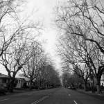 Unsprung in Alameda