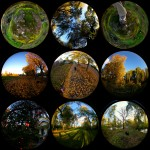Sellwood through the fisheye