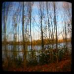 Looking across the Willamette