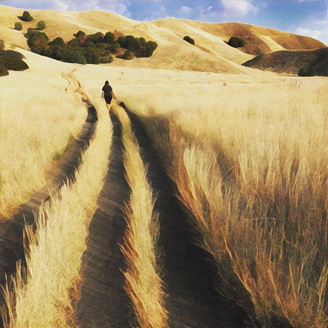 Golden hour #prisma - Gwyn's Blog